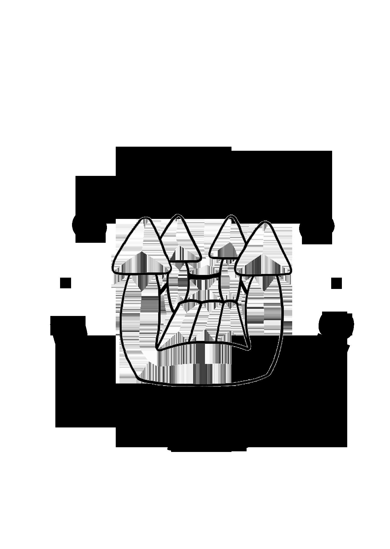 Logo Bouncing Castle Hire Perth